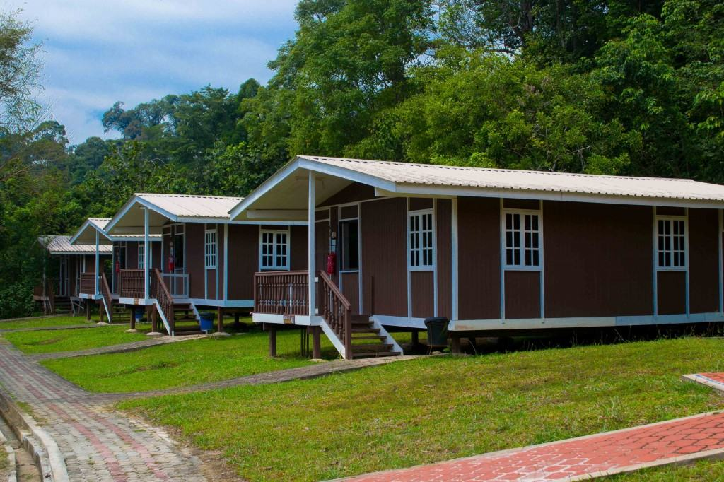 We found our way back to our rustic wooden chalet - Lambir Hills National Park