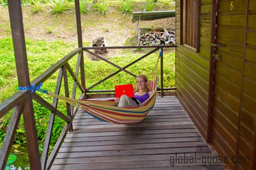 This is what work looks like at the TreeTops Jungle Lodge