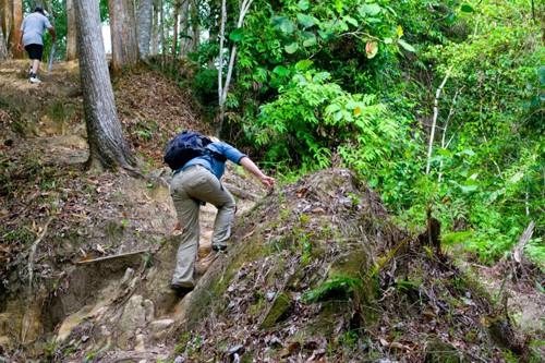Scrambling up the hill