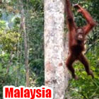 malaysia1