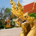 Golden Dragon heads