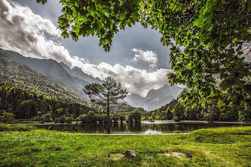 photo credit: Iztok Alf Kurnik via photopin cc