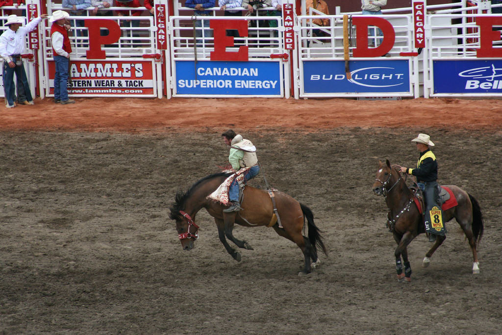 calgary-stampede2