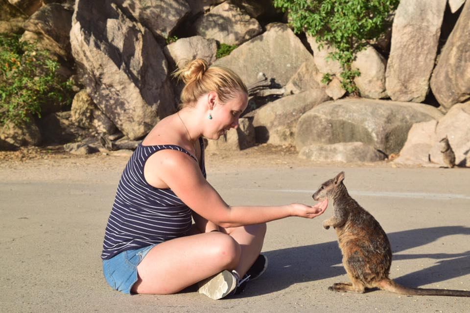 kellywallaby
