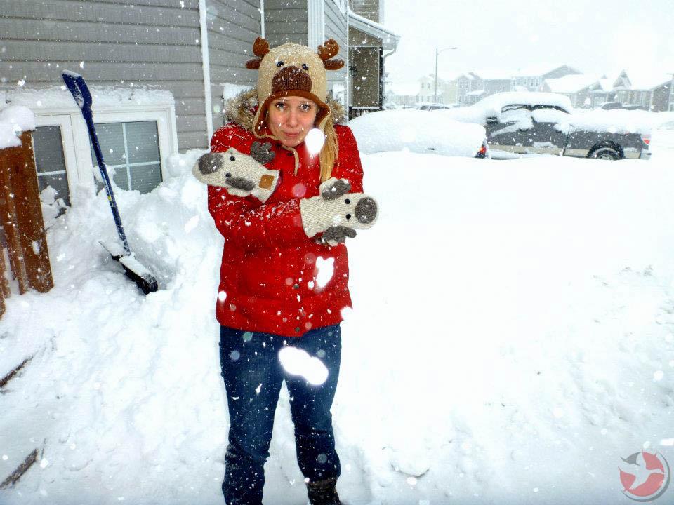 Canadian Winter Newfoundland