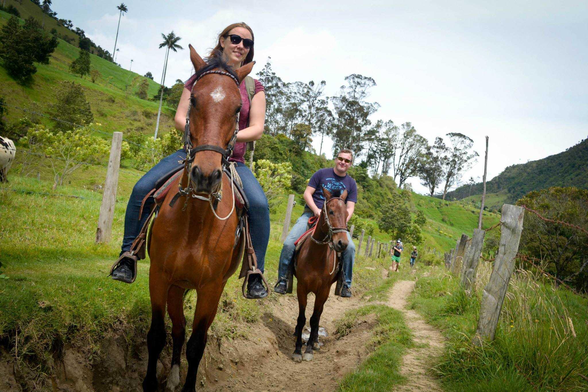 horsescolombia