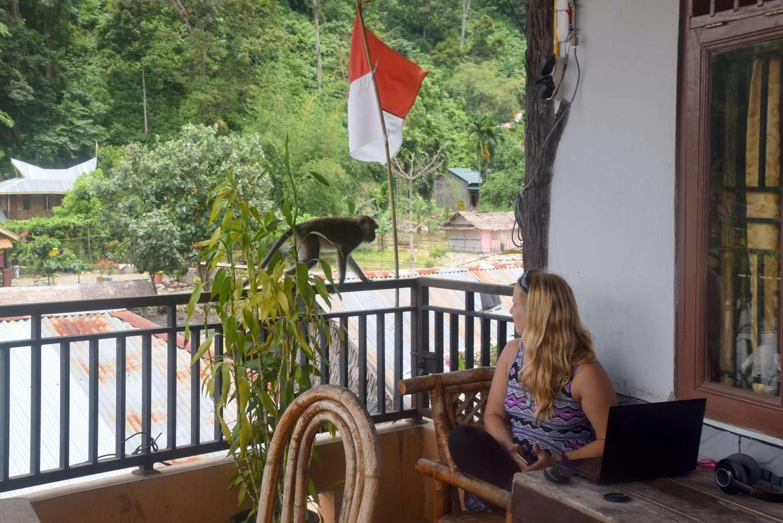 Go to Bukit Lawang, Indonesia