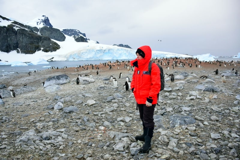 Want To Travel Antarctica These Travel Bloggers Will Inspire You - Traveling to antarctica
